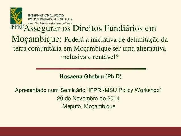 Assegurar os Direitos Fundiários em Moçambique: Poderá a iniciativa de delimitação da terra comunitária em Moçambique ser ...