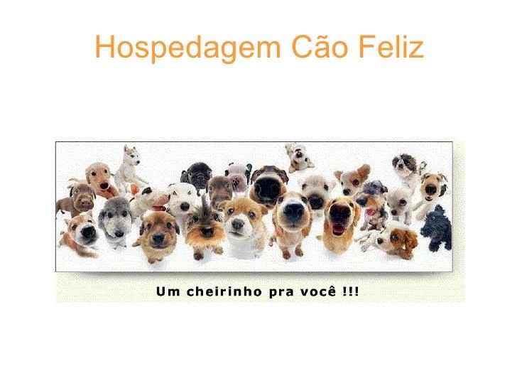 Hospedagem Cão Feliz