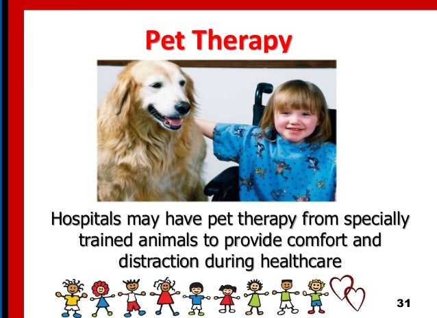 Pet Therapy Hospitals may have pet therapy from specially trained animals to provide comfort and distraction during health...