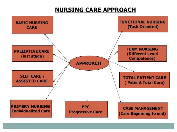 standards of nursing services Standards of nursing services association of nursing service administrators of the philippines, inc (ansap) committee on nursing practice 2008 edition.