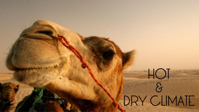 HOT & DRY CLIMATE