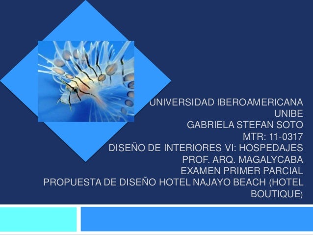 UNIVERSIDAD IBEROAMERICANA                                           UNIBE                         GABRIELA STEFAN SOTO   ...