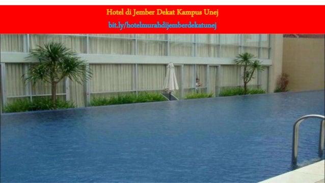 Hotel Murah Di Jember Dekat Unej