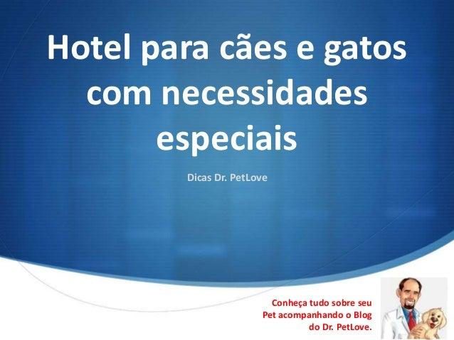 Hotel para cães e gatos  com necessidades       especiais        Dicas Dr. PetLove                         Conheça tudo so...