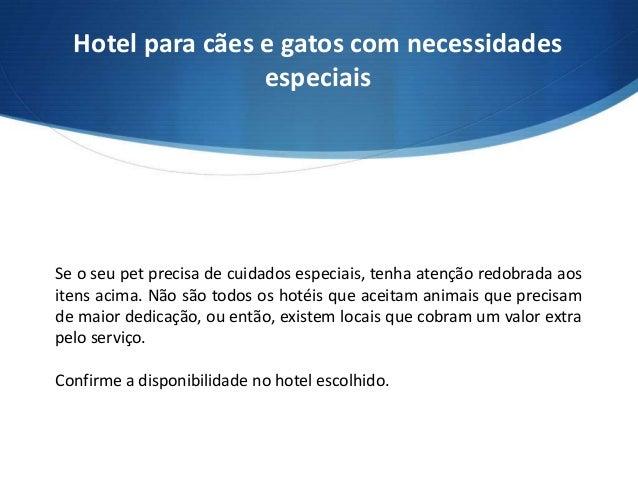 dicas-petlove-hotel-para-caes-e-gatos-com-necessidades-especiais-14 ...