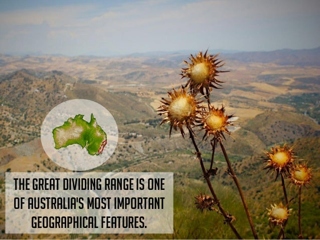Find a landscape pictures and place horizon line on the upper third or lower thirds. Place a horizontal line