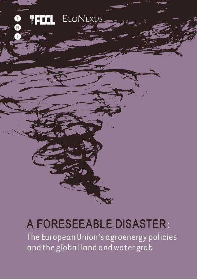A foreseeable disaster: TheEuropeanUnion'sagroenergypolicies andthegloballandandwatergrab