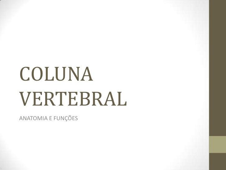 COLUNAVERTEBRALANATOMIA E FUNÇÕES