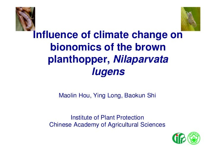 Influence of climate change on    bionomics of the brown    planthopper,    planthopper Nilaparvata            lugens     ...