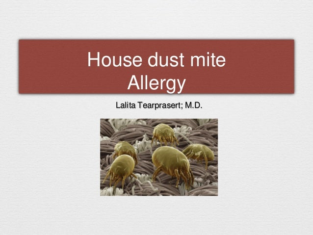 House dust mite Allergy Lalita Tearprasert; M.D.