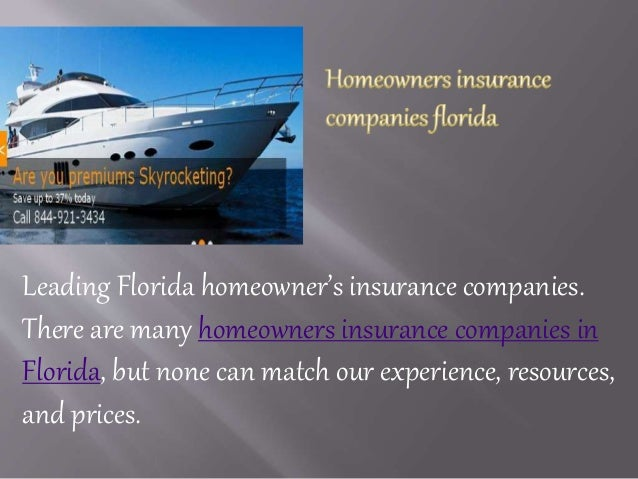 Top Property And Casualty Insurance Companies In Florida