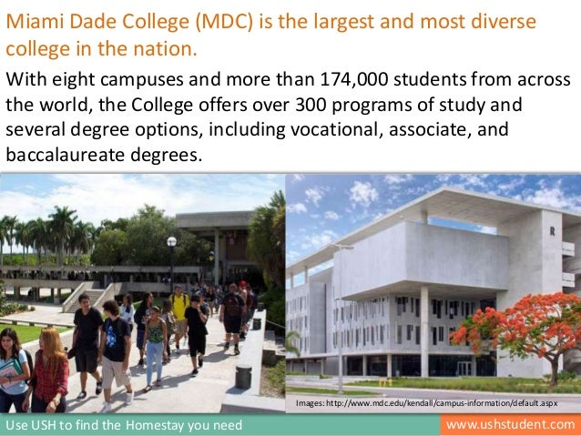 Homestay Housing Programs For Miami Dade College Students   Kendall And  Wolfson Campus Part 4