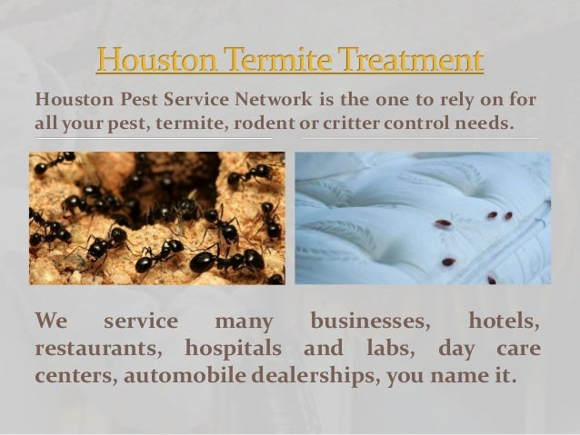 Houston Pest Control Service Slide 2