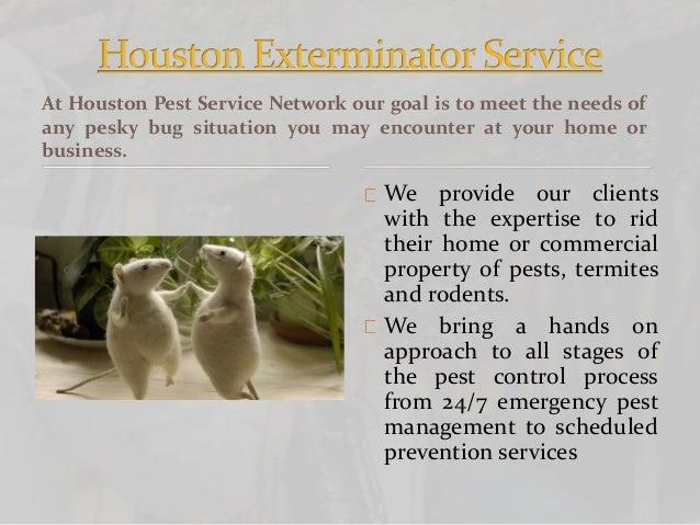 Houston Pest Control Service Slide 3