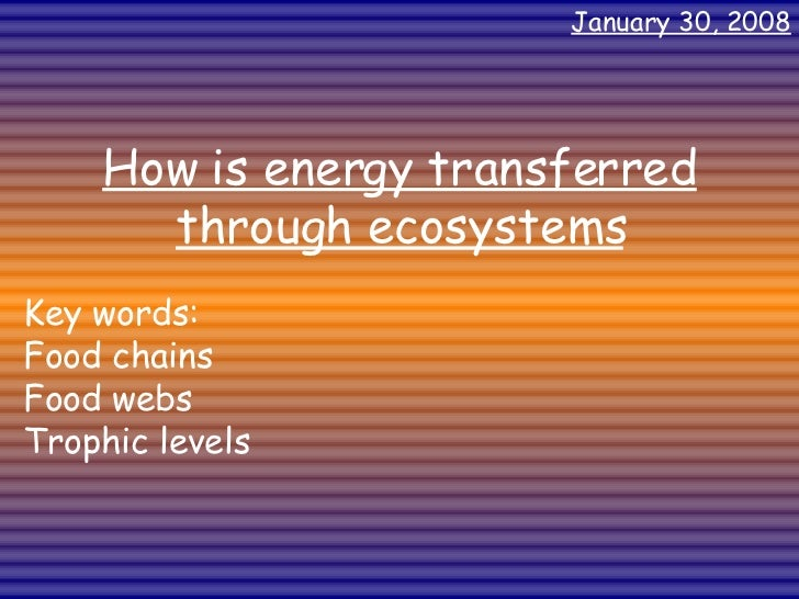 How is energy transferred through ecosystems Key words: Food chains Food webs Trophic levels May 29, 2009