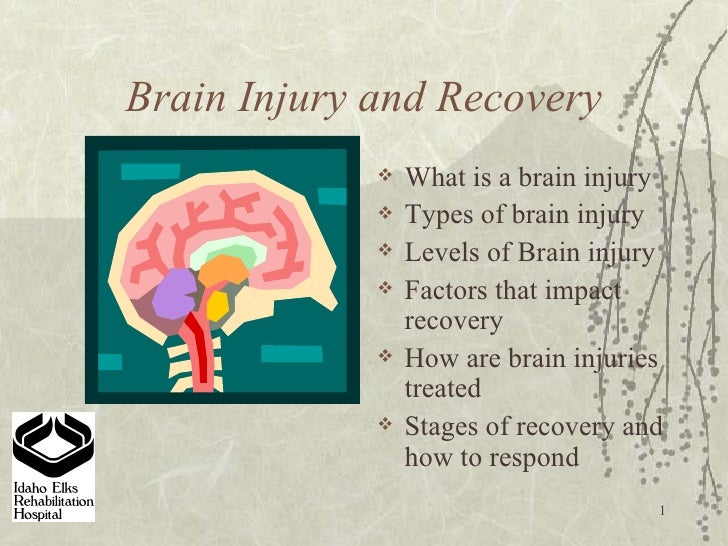 Brain Injury and Recovery <ul><li>What is a brain injury  </li></ul><ul><li>Types of brain injury </li></ul><ul><li>Levels...