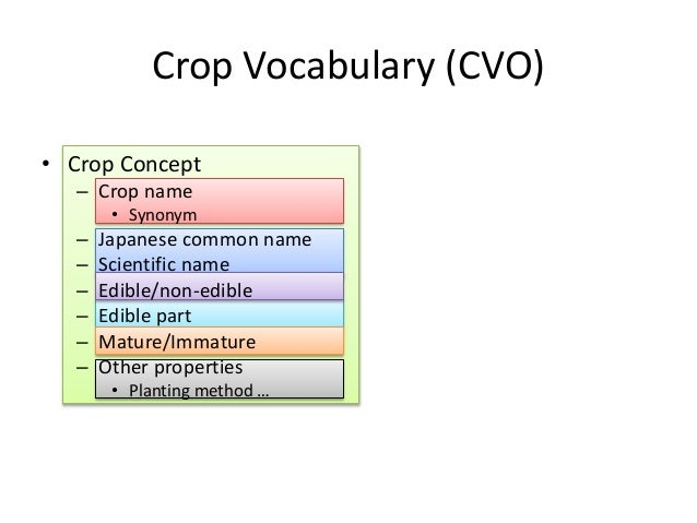 API based on CVO Food names In food composition database has food name, food number, English name and scientific name. Cro...