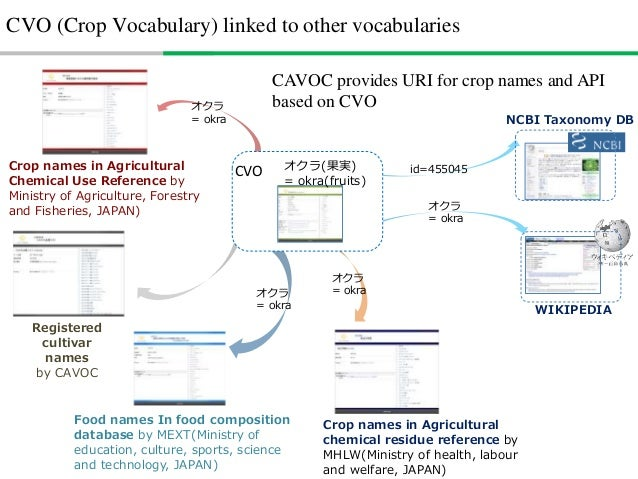 How to build CVO • Survey and interview to stakeholders – JA – Farmers – Agricultural chemical experts – Market operators ...
