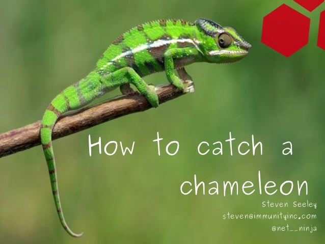 How to catch a                     chameleon                                         Steven Seeley                        ...