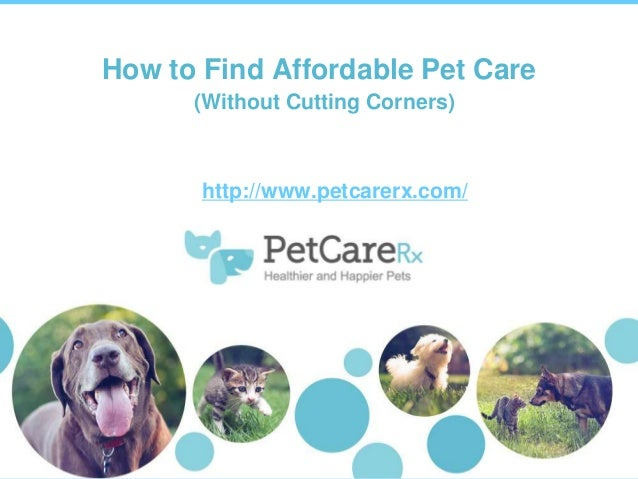 How to Find Affordable Pet Care (Without Cutting Corners)  http://www.petcarerx.com/  0