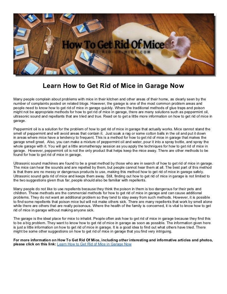 Learn How to Get Rid of Mice in Garage NowMany people complain about problems with mice in their kitchen and other areas o...