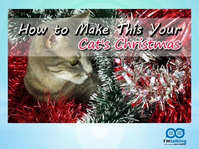 how to make cat with cd