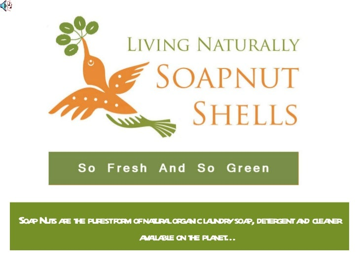 Soap Nuts are the purest form of natural organic laundry soap, detergent and cleaner available on the planet…