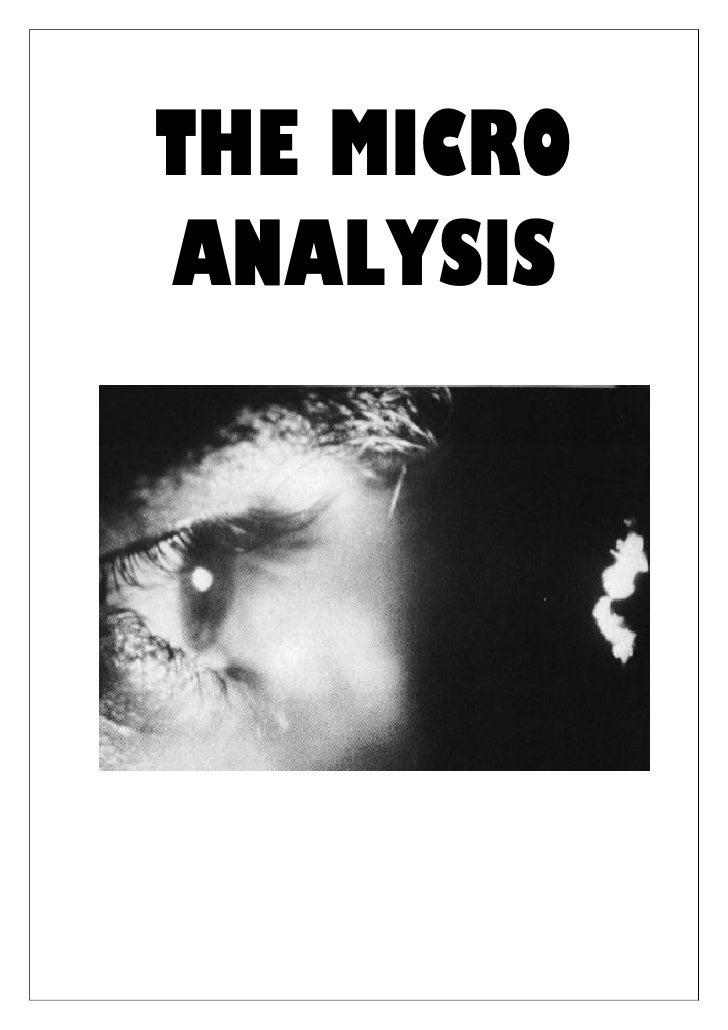 THE MICRO ANALYSIS