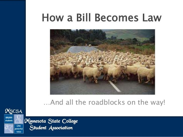 …And all the roadblocks on the way! How a Bill Becomes Law