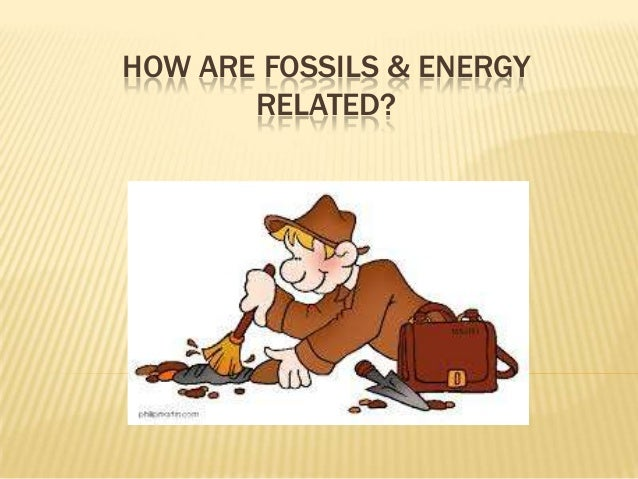 HOW ARE FOSSILS & ENERGY RELATED?