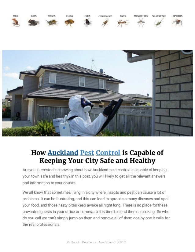 How ​Auckland​ ​Pest​ ​Control​ is Capable of Keeping Your City Safe and Healthy Are you interested in knowing about how A...