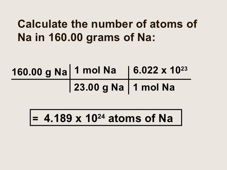 How Big Is A Mole