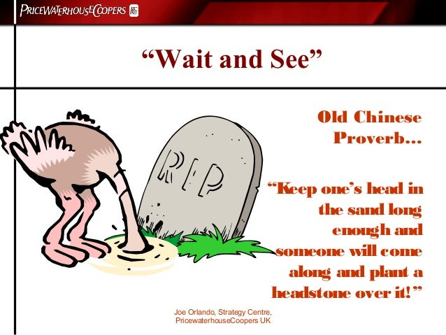 """Joe Orlando, Strategy Centre, PricewaterhouseCoopers UK """"Wait and See"""" Old Chinese Proverb… """"Keep one's head in the sand l..."""