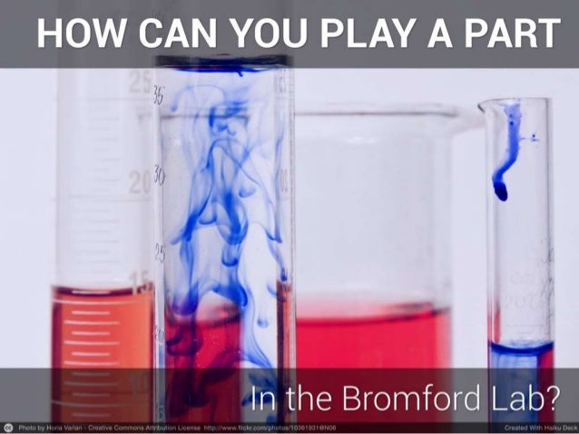 How Can You Get Involved With The Bromford Lab