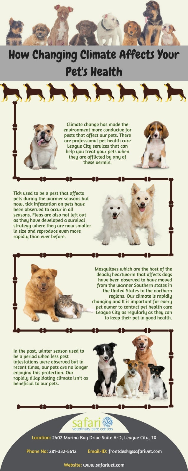 How changing climate affects your pet's health
