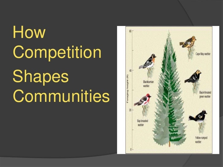 How Competition<br />  Shapes   Communities<br />