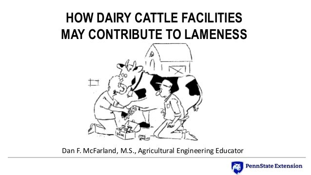 HOW DAIRY CATTLE FACILITIES MAY CONTRIBUTE TO LAMENESS Dan F. McFarland, M.S., Agricultural Engineering Educator