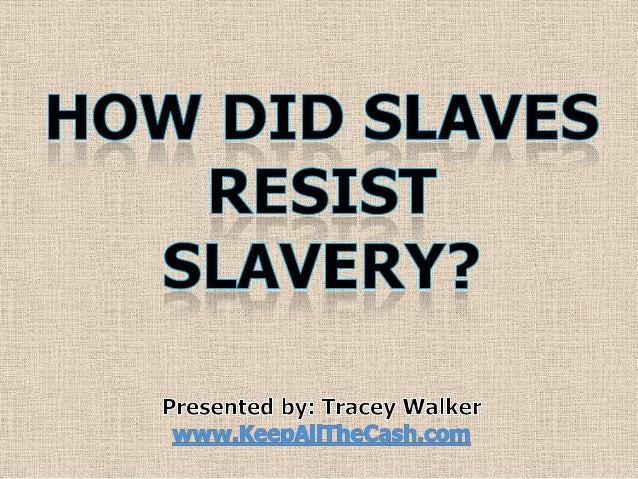 was slavery the primary cause of the civil war essay
