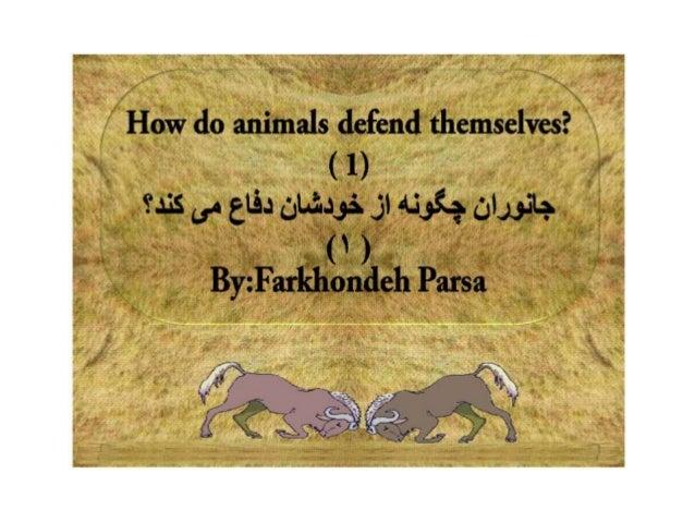 How do animals defend  1