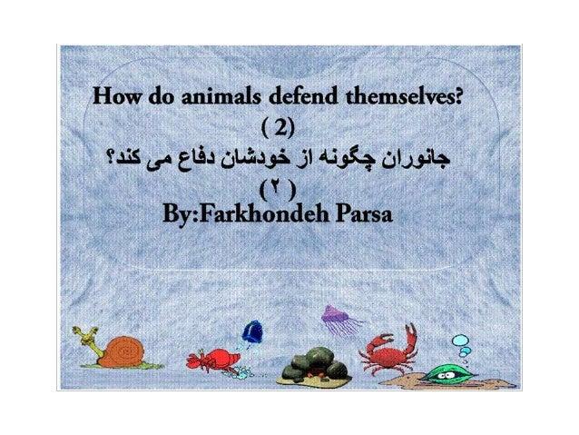 How do animals defend  2