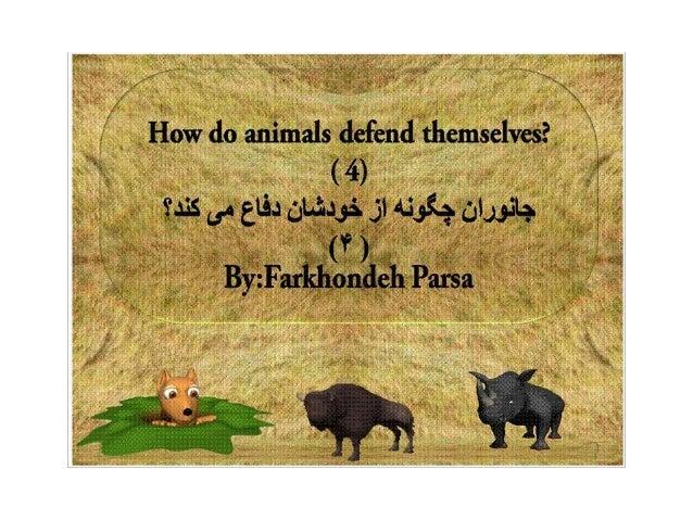 How do animals defend  4