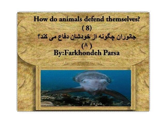 How do animals defend  8