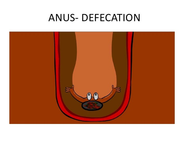 Apple in anus