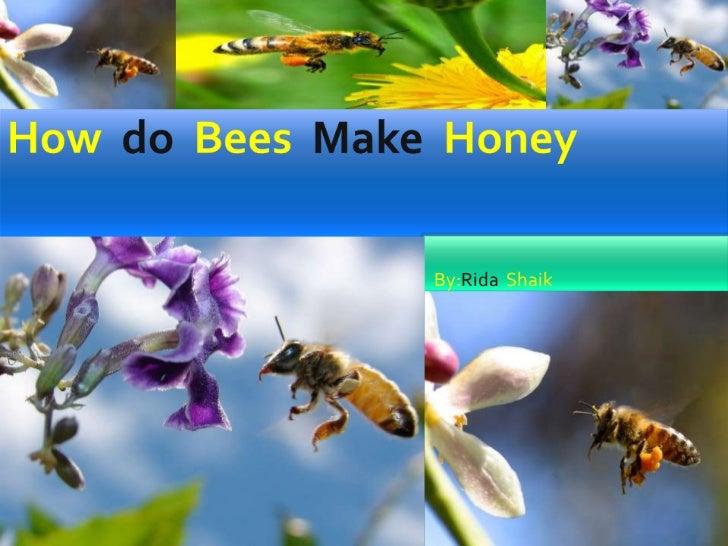 Howdo Bees Make  Honey<br />By:Rida  Shaik<br />