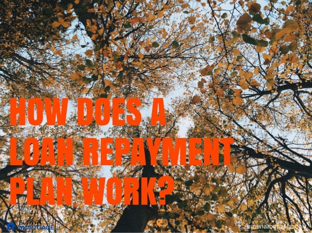 HOW DOES A LOAN REPAYMENT PLAN WORK? BLOWNMORTGAGE.COM