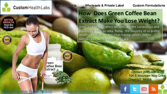 How does green coffee bean extract make you lose weight