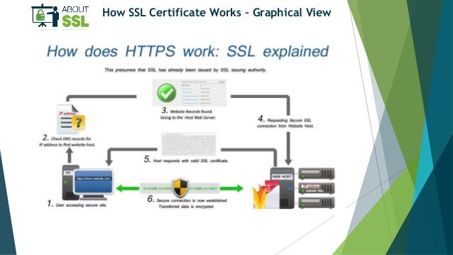 How Does SSL Work? How to Enable it for Website?
