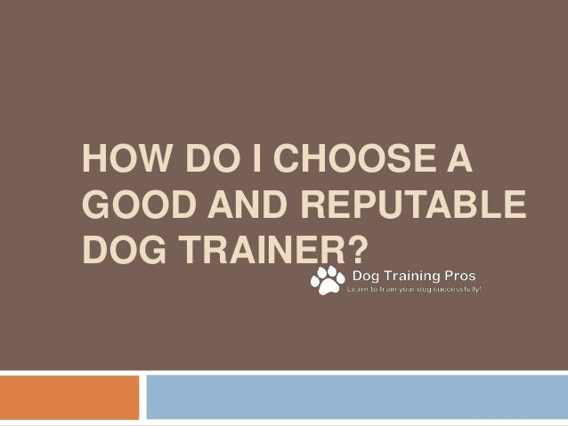 HOW DO I CHOOSE A GOOD AND REPUTABLE DOG TRAINER?