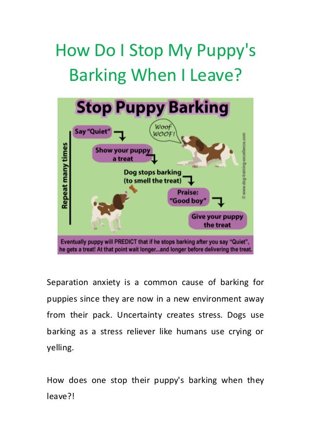 How Do I Stop My Puppy's Barking When I Leave? Separation anxiety is a common cause of barking for puppies since they are ...