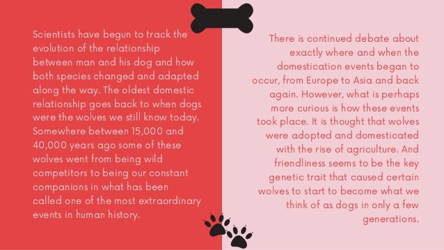 How Domestication Changed the Dog Slide 3